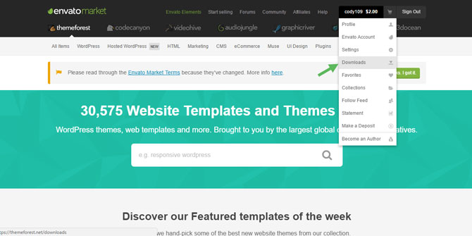 Themeforest Downloads